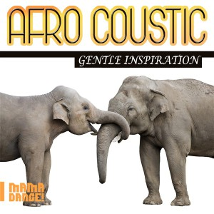 MDML147 - Afro Coustic - Gentle Inspiration_Logo (600 x 600)