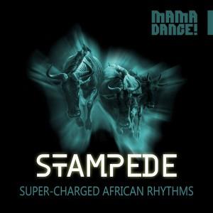 MDML210-Stampede_Logo (600 x 600)